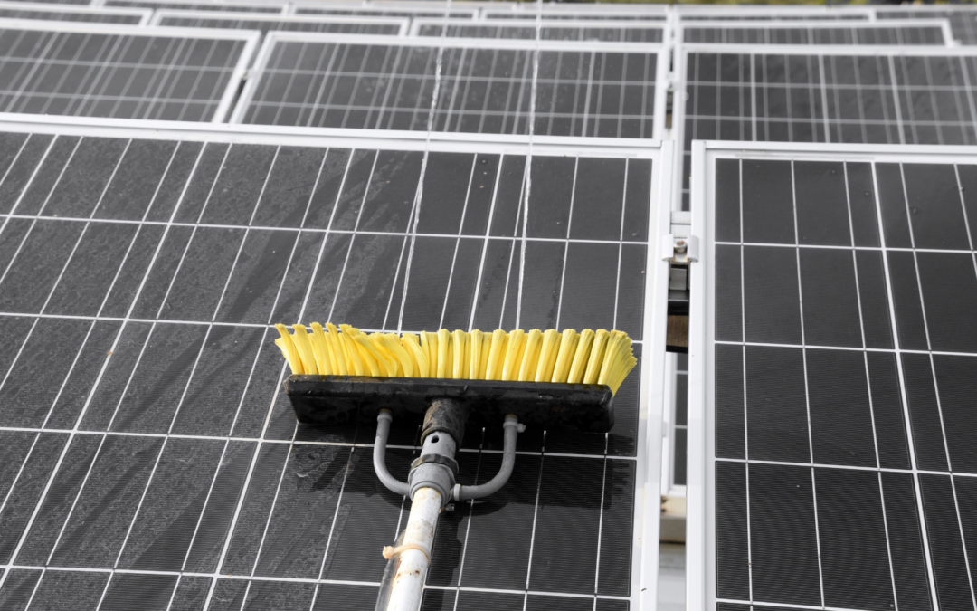Solar PV Module Cleaning Guidelines — All You Need to Know